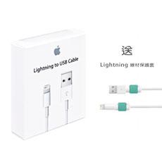 Apple原廠 認證 Lightning 對 USB 連接線MD818 (1公尺) 盒裝公司貨